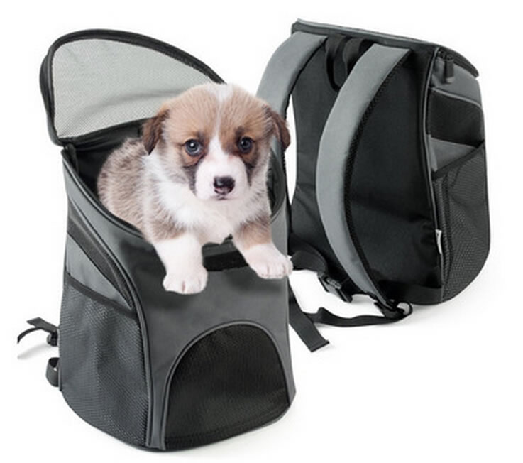 Popular Pet Backpack Bag For Dog, Cat